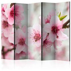 Parawan 5-częściowy - Kwitnąca wiśnia - różowe kwiatuszki II [Room Dividers]
