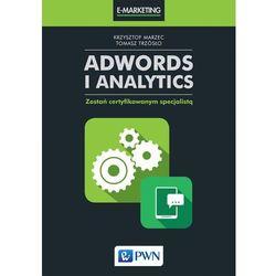 AdWords i Analytics - Dostawa 0 zł (opr. miękka)