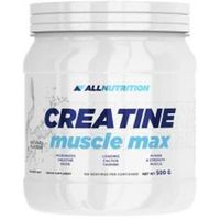 Kreatyny, ALLNUTRITION Creatine Muscle Max 500g