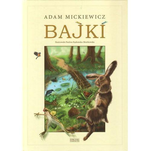 Książki dla dzieci, Bajki Ilustrowała Paulina Radomska-Skierkowska (opr. twarda)