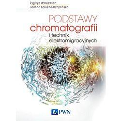 Podstawy chromatografii i technik elektromigracyjnych (opr. miękka)