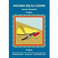 E-booki, Historia żółtej ciżemki Antoniny Domańskiej. Streszczenie, analiza, interpretacja