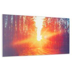 Klarstein Wonderwall Air Art Infinite, grzejnik promiennikowy na podczerwień, obraz, 120 x 60 cm, 720 W, montaż ścienny, FB