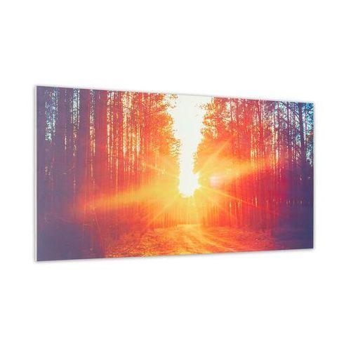 Promienniki ciepła, Klarstein Wonderwall Air Art Infinite, grzejnik promiennikowy na podczerwień, obraz, 120 x 60 cm, 720 W, montaż ścienny, FB