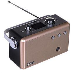 Radio FERGUSON Regent P1 Srebrny
