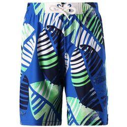 Kostium kąpielowy Reima Biitzi Niebieski - niebiesko-zielony ||6641 -30REIMA (-30%)