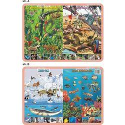 Podkładka edukacyjna. Zwierzęta świata - dżungla amazońska, Australia, Arktyka, rafa