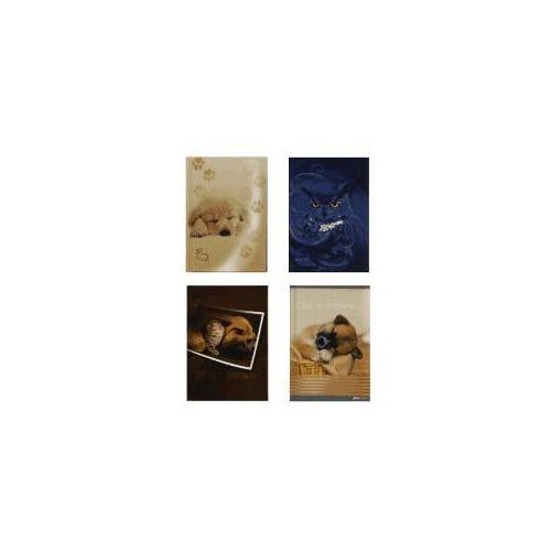 Zeszyty, Brulion A6/96 kartek w kratkę