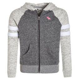 Abercrombie & Fitch COLORBLOCKED CORE FULLZIP Bluza rozpinana dark grey/light grey