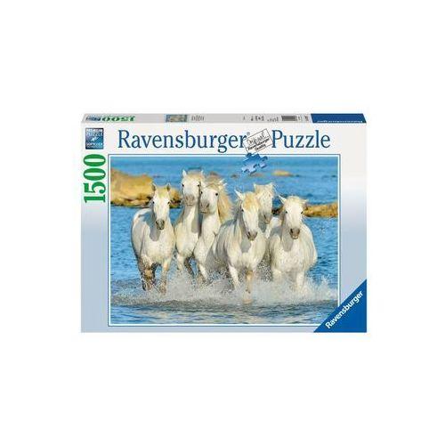 Puzzle, RAVEN Puzzle Orzeźwiający galop