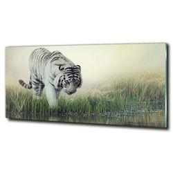 Foto-obraz szkło hartowane Biały tygrys