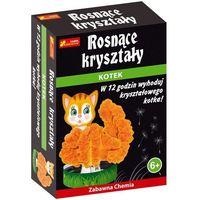 Kreatywne dla dzieci, Rosnące kryształy - kryształowy kotek - Ranok-Creative