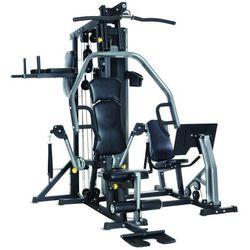 Atlas Horizon Fitness Torus 5 Multistacja 100755