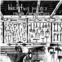 Folk, Black Twig Pickers, The - Rough Carpenters