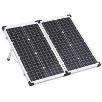 Baterie słoneczne, VidaXL Składany panel solarny, walizkowy, 60 W, 12 V