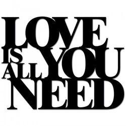 Napis na ścianę LOVE IS ALL YOU NEED czarny LIAYN1-1
