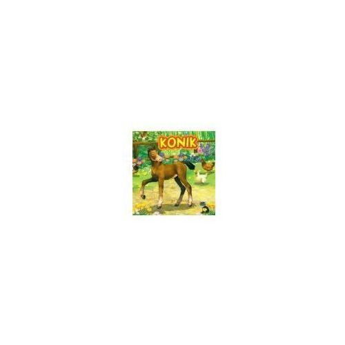 Książki dla dzieci, KONIK (opr. twarda)