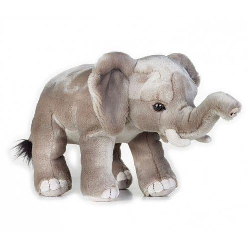 Pluszaki pozostałe, Pluszak National Geographic Słoń afrykański 25 cm