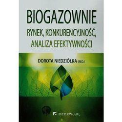 Biogazownie rynek konkurencyjność analiza efektywności - NIEDZIOLKA DOROTA (opr. miękka)