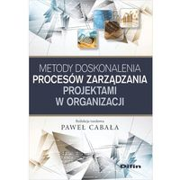 Biblioteka biznesu, Metody doskonalenia procesów zarządzania projektami w organizacji (opr. miękka)