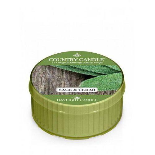 Pozostała aromaterapia, Country Candle - Sage and Cedar - Daylight (35g)