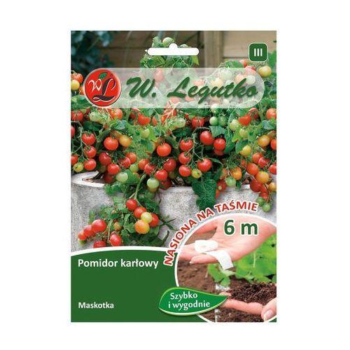 Nasiona, Pomidor gruntowy karłowy MASKOTKA W. LEGUTKO