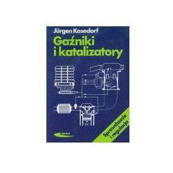 Gaźniki i katalizatory. Sprawdzanie i regulacja (opr. miękka)