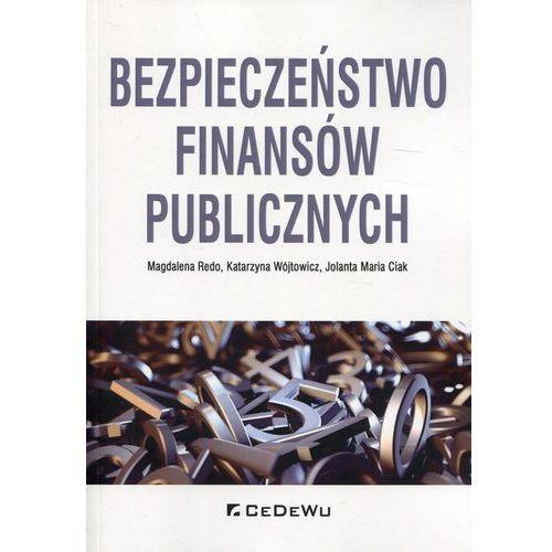 Książki o biznesie i ekonomii, Bezpieczeństwo finansów publicznych (opr. miękka)