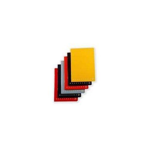 Zeszyty, Zeszyt do słówek A6 Pigna Monocromo w kratkę 40 kartek mix kolorów