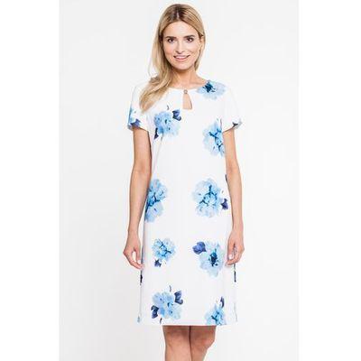 0db91ac4c5 Suknie i sukienki Paola Collection od najdroższych promocja 2019 ...